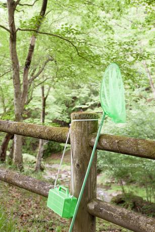 虫取り網とかごの写真素材 [FYI00498677]
