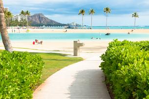 ハワイのビーチと海に続く道の素材 [FYI00498996]