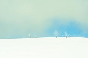 雪山と樹氷の素材 [FYI00499021]
