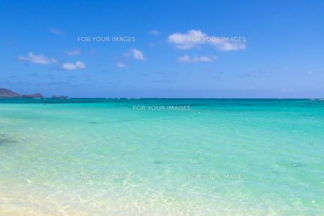 青い海と青い空と白い雲の素材 [FYI00499045]