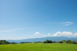佐渡島の田園風景の素材 [FYI00499058]