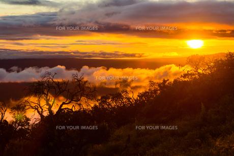 ハワイ島 マウアロナ山から見る夕日の素材 [FYI00499070]