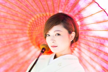着物美人 日本人の素材 [FYI00499080]