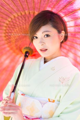 着物美人 日本人の素材 [FYI00499083]