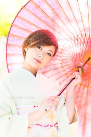 着物美人 日本人の素材 [FYI00499086]