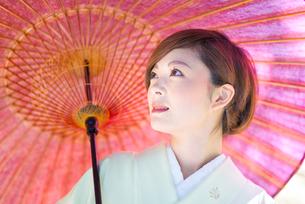 着物美人 日本人の素材 [FYI00499087]