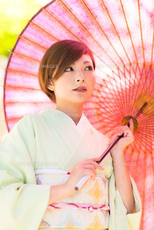 日本人 着物を着た美女の素材 [FYI00499089]