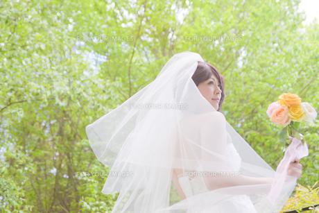 結婚式 新婦 日本人の素材 [FYI00499098]