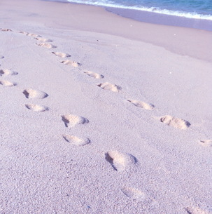 足跡、海岸の写真素材 [FYI00499158]