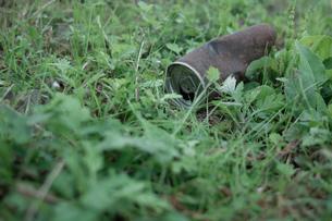 捨てられた空き缶の写真素材 [FYI00499163]