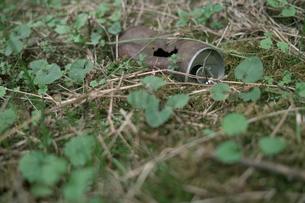 捨てられた空き缶の写真素材 [FYI00499168]