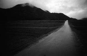 道の写真素材 [FYI00499198]