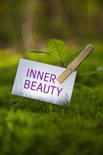 wellness_beautyの素材 [FYI00514948]
