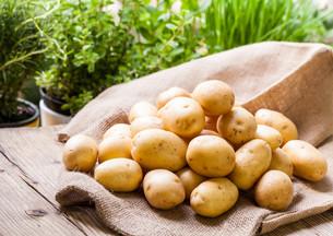 fruits_vegetablesの写真素材 [FYI00520205]