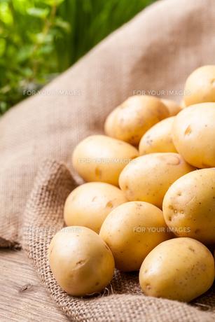 fruits_vegetablesの写真素材 [FYI00529045]