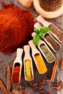 ingredients_spicesの写真素材 [FYI00535896]