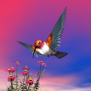 birdsの写真素材 [FYI00539719]