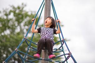 公園で遊ぶ子供の写真素材 [FYI00541537]