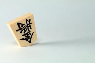将棋の駒・金将の写真素材 [FYI00542044]