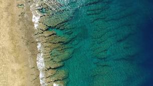沖縄の珊瑚の写真素材 [FYI00542552]