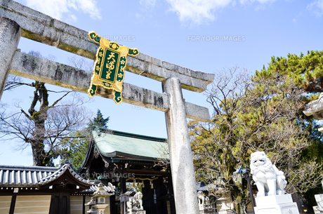 京都 北野天満宮 東門の鳥居の写真素材 [FYI00543024]