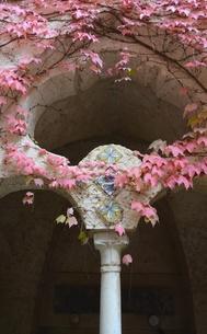 イタリアのラヴェッロの街中風景の写真素材 [FYI00543068]
