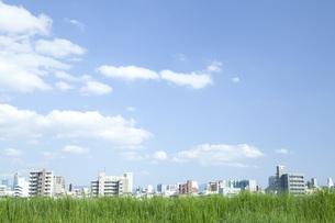 草原と街並みの写真素材 [FYI00543356]