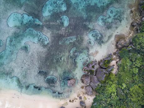 沖縄の海の写真素材 [FYI00543759]