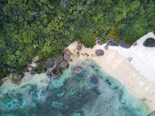 沖縄の海の写真素材 [FYI00543760]