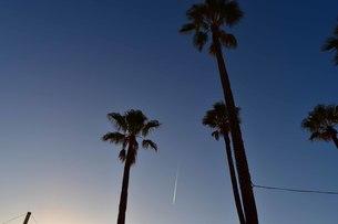南港トレードセンター夕暮れの飛行機雲の写真素材 [FYI00543838]