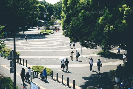 東京3の写真素材 [FYI00543853]