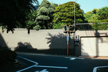 東京5の写真素材 [FYI00543855]