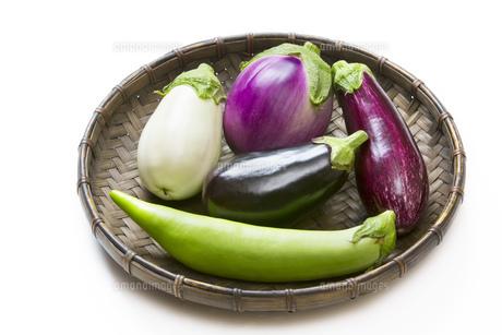 5種類の珍しい茄子の写真素材 [FYI00543925]