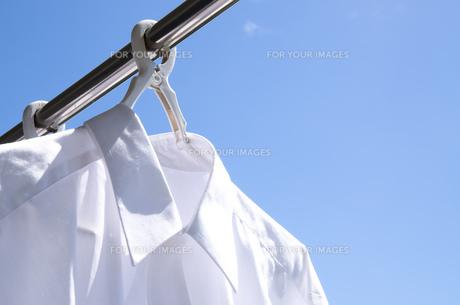 洗濯日和 青空の下でのワイシャツ干しの写真素材 [FYI00544821]
