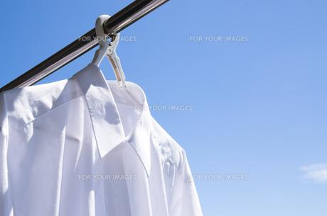 洗濯日和 青空の下でのワイシャツ干しの写真素材 [FYI00544828]