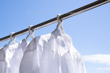 洗濯日和 青空の下でのワイシャツ干しの写真素材 [FYI00544833]
