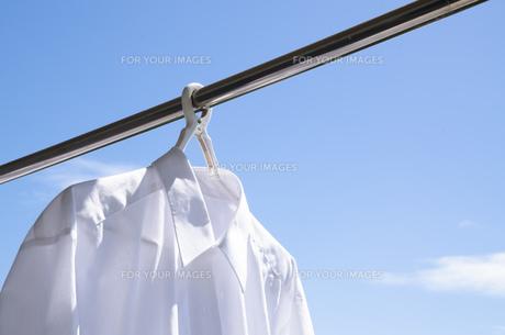 洗濯日和 青空の下でのワイシャツ干しの写真素材 [FYI00544837]