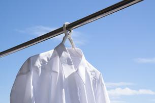 洗濯日和 青空の下でのワイシャツ干しの写真素材 [FYI00544840]