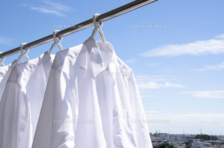 洗濯日和 青空の下でのワイシャツ干しの写真素材 [FYI00544842]