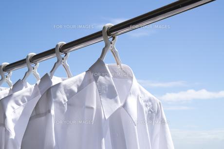 洗濯日和 青空の下でのワイシャツ干しの写真素材 [FYI00544844]
