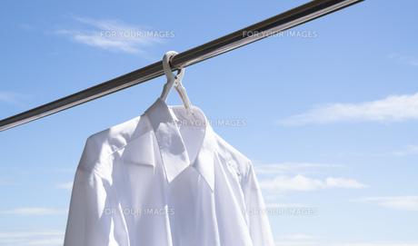 洗濯日和 青空の下でのワイシャツ干しの写真素材 [FYI00544845]