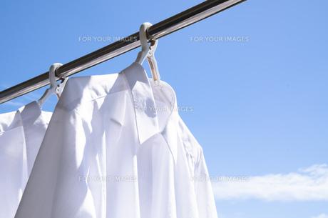 洗濯日和 青空の下でのワイシャツ干しの写真素材 [FYI00544847]