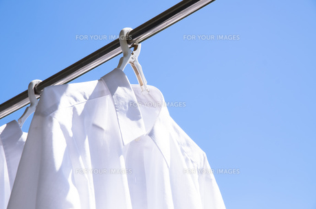 洗濯日和 青空の下でのワイシャツ干しの写真素材 [FYI00544849]