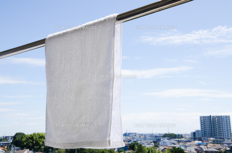 洗濯日和 青空の下でのタオル干しの写真素材 [FYI00544858]