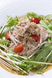 シーチキンと水菜のサラダの写真素材 [FYI00544871]