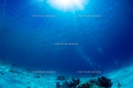 透明度の高い海の写真素材 [FYI00544946]