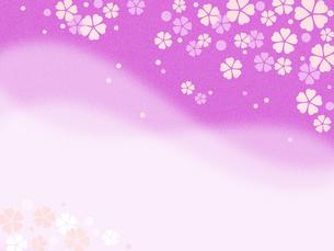 桜の花模様 コピースペースのイラスト素材 [FYI00545023]