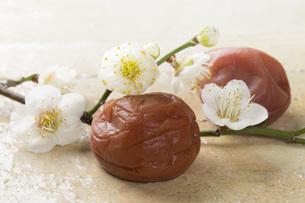梅干しと梅の花の写真素材 [FYI00545198]