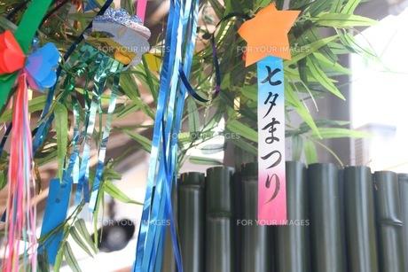 七夕の写真素材 [FYI00545272]