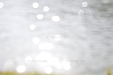 池の写真素材 [FYI00545291]